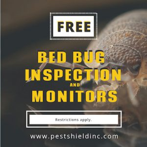 Bed Bug Inspection Coupon