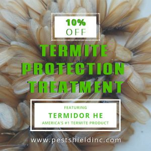 Termite protection coupon